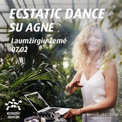 SA webui Ecstatic Agne